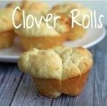 Clover Dinner Rolls