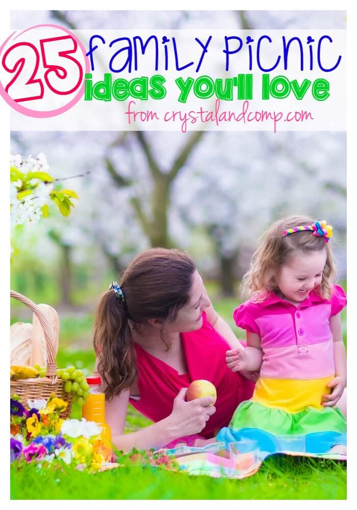 25-family-picnic-ideas-you-will-love