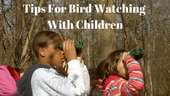 Tips-For-Bird-Watching-With-Children