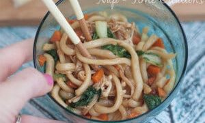Asian Inspired Udon Noodle Dinner