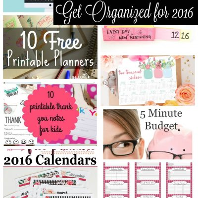 Get Organized for 2016 {features}