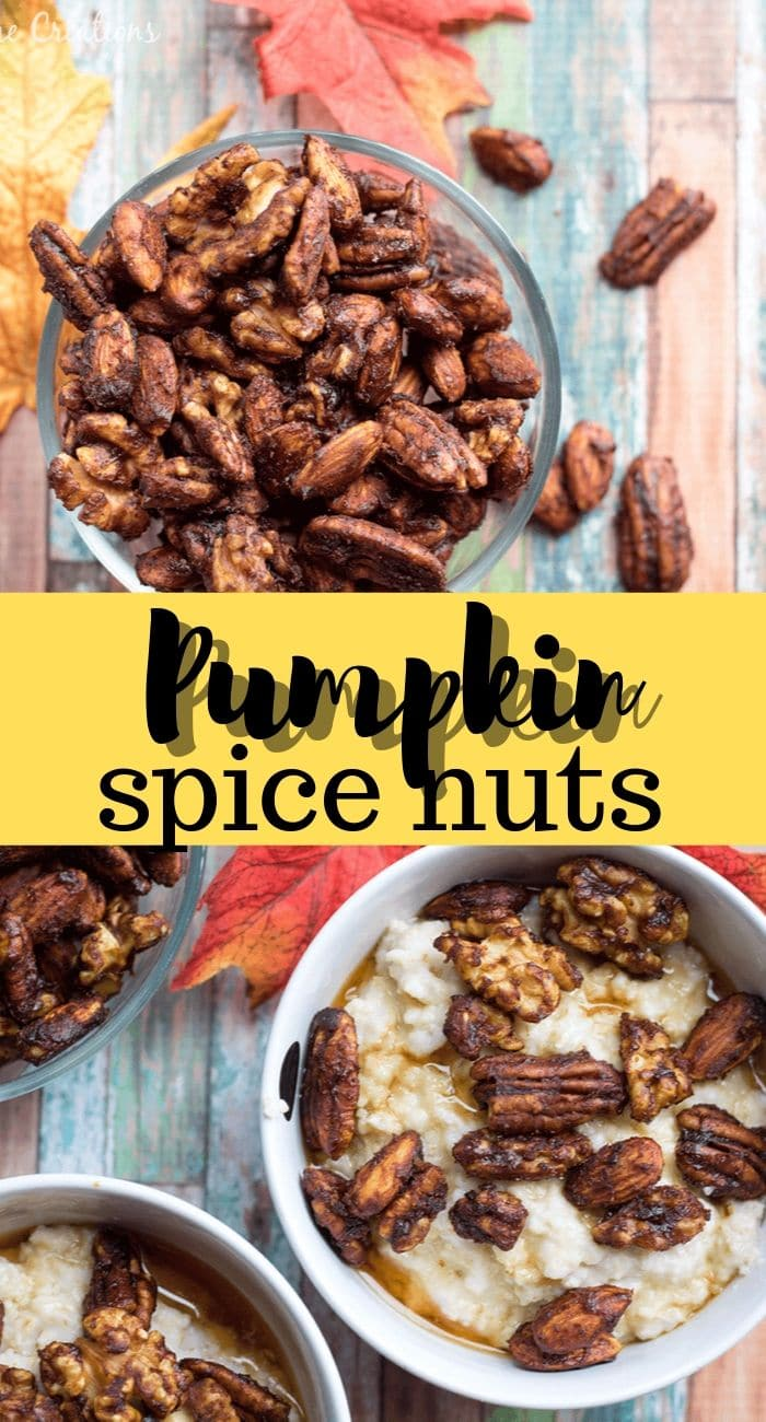 nuts with pumpkin spice Great on oatmeal or as a fall snack from Life Sew Savory
