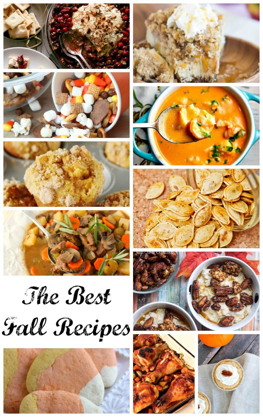 the best fall recipes a-round-up-from-nap-time-creations
