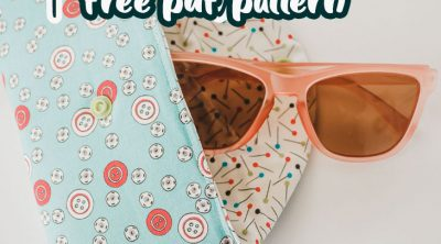 padded sunglasses case for glasses