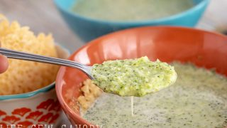 Low Carb Broccoli Leek Soup