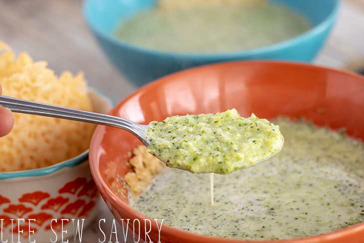 broccoli and leek low carb soup
