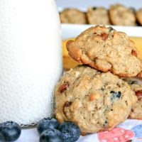 Banana Blueberry Oatmeal Breakfast Cookies