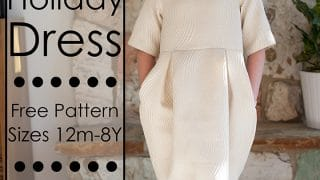 DIY Holiday Dress - Shwin and Shwin