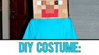 Make Your Own Minecraft Steve Head