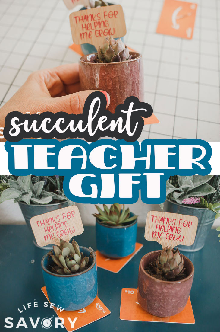 """Create a beautiful plant teacher gift with simple items and a free svg file. Use the included """"thanks for helping me grow"""" file to create a lovely gift for your teachers."""