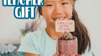 succulent teacher gift idea